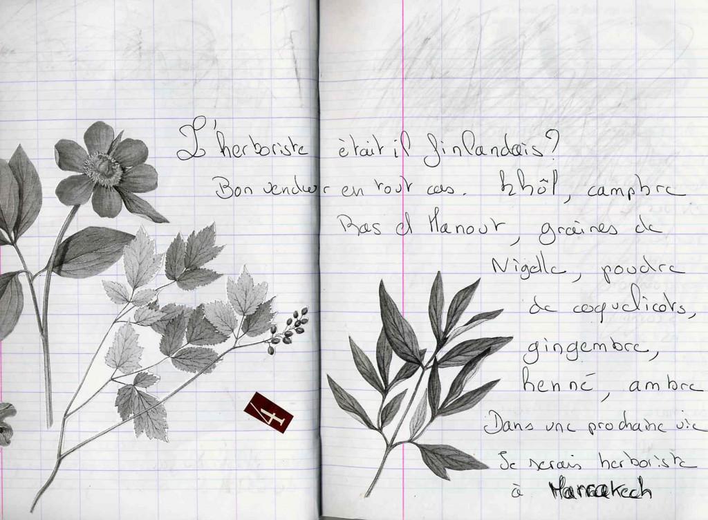 Page d'un cahier souvenir écrit au retour de Marrakech il y maintenant plus de 10 ans !